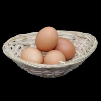 Bioland Eier frisch (Stk)