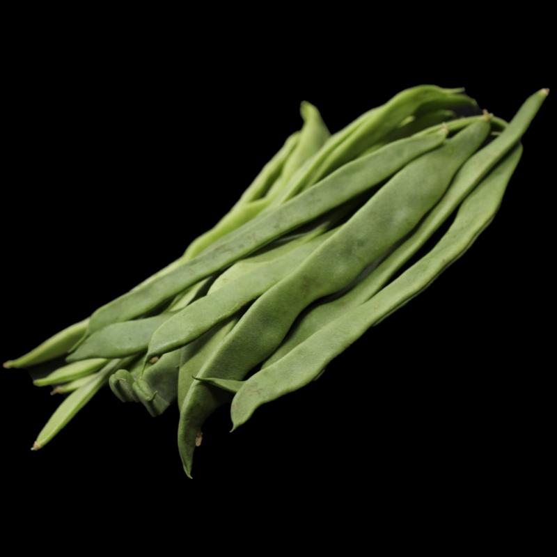 Bohnen Breit